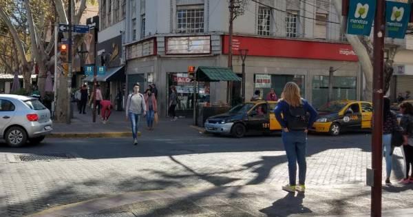 Dólar ahorro: en Mendoza, arbolitos lo venden a $145 - Mendoza Post