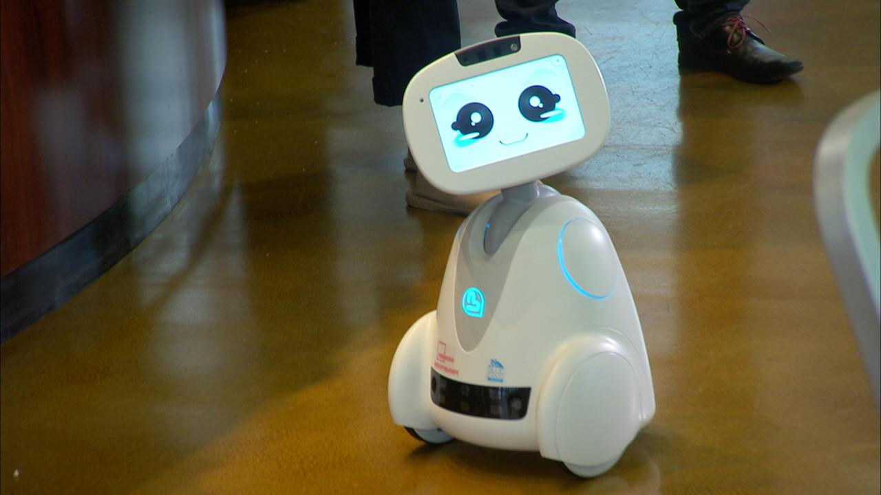 El futuro lleg buddy el robot dom stico de s lo 500 - Robot qui fait la cuisine ...