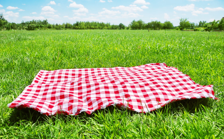 C mo armar un picnic perfecto en 6 pasos mendoza post - Platos para picnic ...